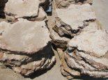 אבן כורכר נהריה